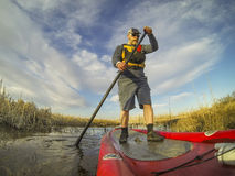 Stand up paddling (SUP) in a wetland. Mature male paddler enjoying workout on an inflatable stand up paddleboard (SUP), calm lake in one of nature areas in Fort Stock Photography