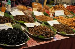 A stand of edible insects in a market, Thailand royalty free stock photography