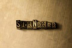 STANDARD - Nahaufnahme der grungy Weinlese setzte Wort auf Metallhintergrund Lizenzfreie Stockfotos