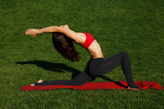Standard yoga poses. girl on green grass. Woman practices yoga in nature Royalty Free Stock Image