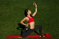 Standard yoga poses. Woman practices yoga in nature Royalty Free Stock Photo