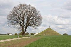 Standbeeld bij slagveld van Waterloo, België Stock Foto's