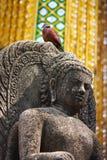 Standbeeld van boeddhistisch met de vogel stock afbeelding