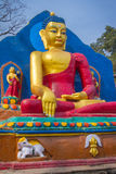 Standbeeld van Boedha - Katmandu Stock Fotografie