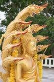 Standbeeld van Boedha met negen leidde serpent Stock Afbeelding
