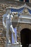 Standbeeld van David door Michelangelo in Florence royalty-vrije stock fotografie