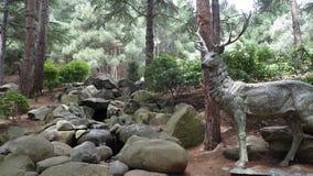 Standbeeld van een hert in het hout dichtbij de rotsen en de Kreek Aivazovskypark royalty-vrije stock fotografie