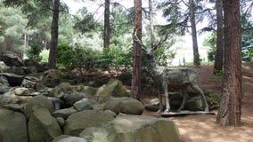 Standbeeld van een hert in het hout dichtbij de rotsen en de Kreek Aivazovskypark stock foto's