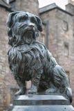 Standbeeld van Greyfriars Bobby, een beroemde Terriër Stock Foto