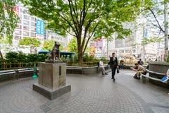 Standbeeld van Hachiko - Shinjuku, Tokyo, Japan Stock Foto