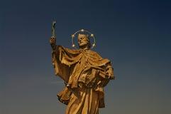 Standbeeld van Heilige Nepomuk bij oude brug, Wurzburg Stock Foto's