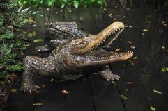 Standbeeld van Krokodil Stock Foto's
