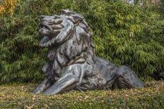 Standbeeld van leeuw in gras met groene struik royalty-vrije stock afbeeldingen