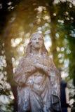 Standbeeld van Maagdelijke Mary Royalty-vrije Stock Foto's