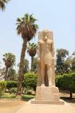 Standbeeld van Ramses II in Memphis, Egypte. Stock Afbeelding