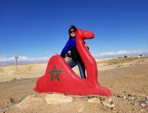 Standbeeld van Rode Kameel op Weg aan de Sahara stock foto's