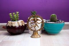 Standbeeld van Shiva Nataraja en succulents in ceramische potten Royalty-vrije Stock Afbeelding