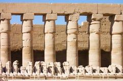 Standbeelden in de oude tempel. Luxor. Egypte Stock Fotografie