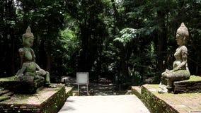 Standbeelden in een park in Thailand stock video