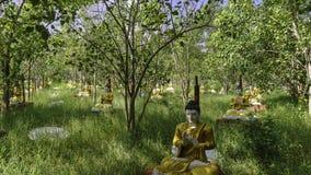 Standbeelden in het bos Stock Afbeelding