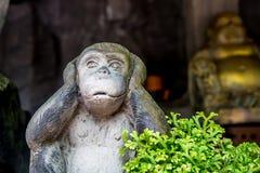 Standbeelden van apen Stock Foto's