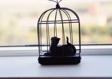 Standbeelden van kat op een venstervensterbank stock foto
