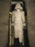 Standbeelden van Ramses II bij Tempel Luxor bij nacht Royalty-vrije Stock Foto's