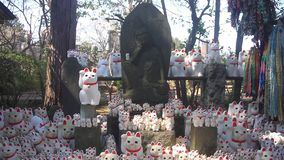 Standbeeldkat in Gotokuji in Tokyo stock videobeelden