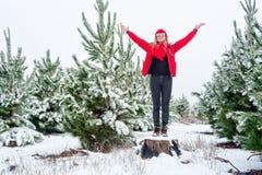 Standiing entre los bosques nevados del árbol de pino imagen de archivo
