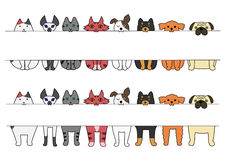 Free Standing And Sitting Cats With Board In Their Mouths Stock Images - 56227044