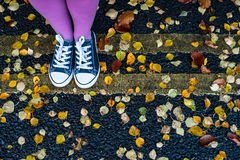 Standing on the autumn street Royalty Free Stock Photos