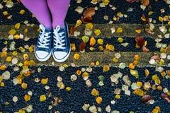 Standing on the autumn street Royalty Free Stock Photos