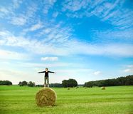Standing on a bale of hay royalty free stock photos