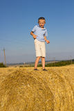 Standing on a bale of hay Royalty Free Stock Images