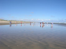 Standing on the beach. Exploring Ninety Mile Beach, North Island, New Zealand royalty free stock photography