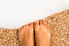 Standing on the beach Stock Photography