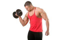 Standing Bicep Dumbbell Curl Royalty Free Stock Images