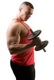 Standing Bicep Dumbbell Curl. Fit athlete doing standing dumbbell curls for training his biceps, isolated in white Stock Photo