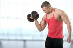 Standing Bicep Dumbbell Curl. Fit athlete doing standing dumbbell curls for training his biceps, in a blue background Royalty Free Stock Images