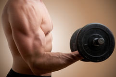Standing Bicep Dumbbell Curl. Personal Trainer doing standing dumbbell curls for training his biceps Stock Photography