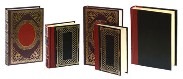 Standing books. Isolated on white background ready to use in yours design Royalty Free Stock Photography