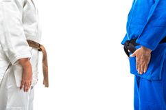 Standing bow of female judo brown belt to her sensei black belt. Isolated on white background Royalty Free Stock Images