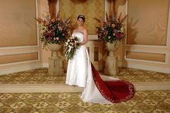 Standing Bride. A elegant bride standing for her wedding day celebration Stock Photography