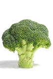 Standing broccoli Stock Image