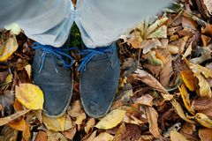 Standing on brown autumn leaves from above. Two feet standing on brown autumn leaves from above Stock Photos