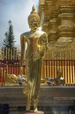 Standing Buddha in Chiang Mai. A standing Buddha in Doi Sutep Temple in Chiang Mai Thailand Royalty Free Stock Photo
