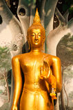 Standing Buddha front of Church on Thai temple in Thailand. Royalty Free Stock Photography