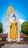 Standing Buddha Image Stock Photos