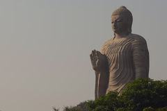 Standing  Buddha Royalty Free Stock Image