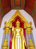 Standing Buddha Stock Photography